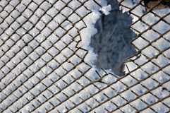 Frosty mesh fence Royalty Free Stock Photos