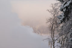 Frosty mist. Winter evening frosty landscape with the mist Royalty Free Stock Photos