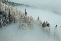 Frosty morning. With fog throughout the country Stock Photos