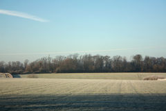 Frosty morning Royalty Free Stock Images