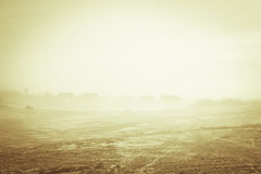 Frosty morning at dawn. Yamal Stock Photography