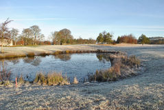 Frosty morning on a golf course Royalty Free Stock Photo