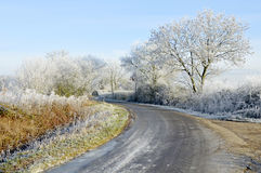 Frosty Morning. Icy morning on country road after severe winter frost Royalty Free Stock Photo
