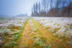 Frosty morning landscape Stock Images