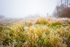 Frosty morning landscape and raised hide. Frosty morning landscape with raised hide. Early winter landscape with meadow and hoarfrost Royalty Free Stock Photography