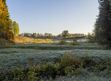 Frosty morning Royalty Free Stock Photos