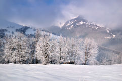 Frosty morning in the mountains Stock Photography