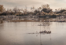Frosty morning on the river. Royalty Free Stock Photography