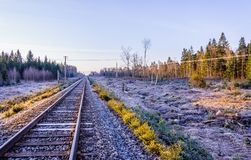 Frosty morning sunrise at the traintracks leading into the unkno Royalty Free Stock Images