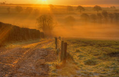 Frosty Morning uk fields trees and mist orange. A bright orange sunrise on a frosty English morning with trees showing through the mist and a view down a track stock image