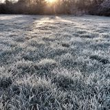 Frosty Morning in Winter Royalty Free Stock Photo