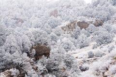 Frosty Mountain Day Stock Photo