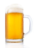 Frosty mug of beer. Isolated on white background Stock Images