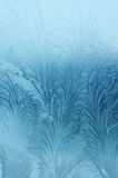 Frosty natural pattern. On winter window Stock Images
