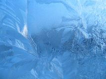 Frosty natural pattern Royalty Free Stock Images