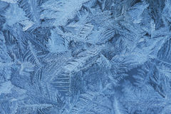 Frosty  natural  pattern at a winter window glass Stock Image