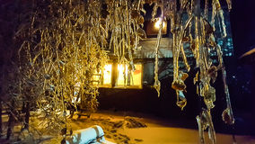 The frosty night. Tree branches covered with ice. In a village house lit window. You can use as an illustration for winter or family home Stock Photography