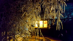 The frosty night. Tree branches covered with ice. In a village house lit window. You can use as an illustration for winter or family home Royalty Free Stock Photo