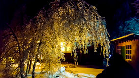 The frosty night. Tree branches covered with ice. In a village house lit window. You can use as an illustration for winter or family home Royalty Free Stock Images