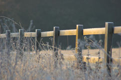 frosty płotu fotografia stock