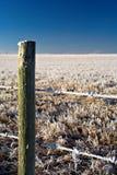 frosty płotu Zdjęcia Royalty Free