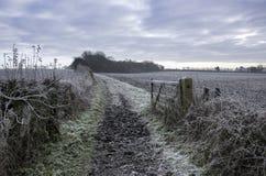 Frosty Pathway rural fotografia de stock
