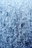 Frosty pattern stock photos