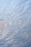 Frosty pattern Royalty Free Stock Photo