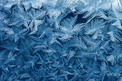 Frosty pattern Royalty Free Stock Photography
