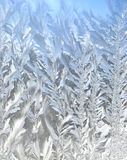 Frosty pattern. At a winter window glass Royalty Free Stock Photo