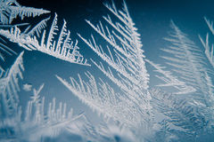 Frosty pattern. On frozen window Royalty Free Stock Photo