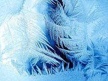 Frosty pattern. On winter window Royalty Free Stock Photo
