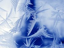 Frosty pattern. On winter window Royalty Free Stock Images