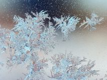 Frosty pattern. On window glass Stock Photos