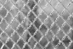 Frosty pattern. Beautiful frosty pattern, macro photo Stock Photo