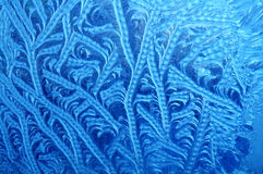 Frosty pattern Stock Photo