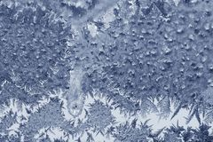 Frosty pattern on a glass Royalty Free Stock Images