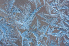 Frosty pattern on the glass, closeup Stock Photography