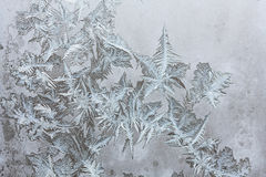 Frosty pattern on the glass Royalty Free Stock Image