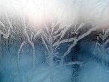 Frosty pattern on glass. Frosty pattern on a windowpane at sunset Royalty Free Stock Photo