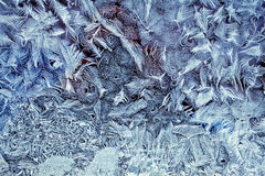 Frosty pattern Stock Images