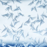Frosty pattern. Stock Photo