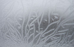 Frosty pattern on the window Royalty Free Stock Photo