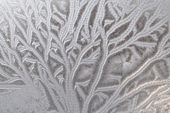 Frosty pattern on window Stock Photography