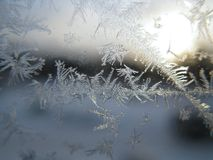 Frosty pattern on winter window Royalty Free Stock Images
