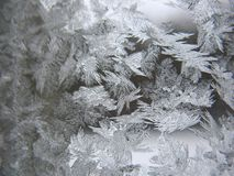Frosty pattern on winter window Royalty Free Stock Image