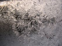 Frosty pattern on winter window Stock Photos