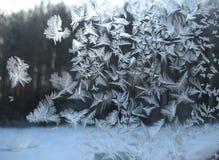 Frosty pattern on winter window Stock Image