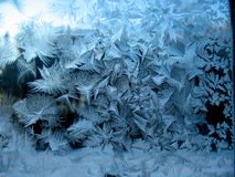 Frosty pattern on winter window Royalty Free Stock Photography