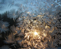 Frosty pattern on winter window and sun Royalty Free Stock Images